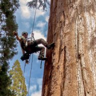 John@TreeXP