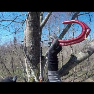 Tree to Tree Traverse & Gear Updates - Homemade Knee Ascender, Tending pulley for Hitch Hiker, MARCS