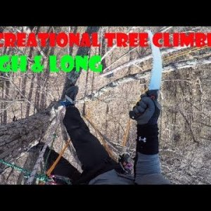 Recreational Tree Climbing: High & Long, Traversing Tree to Tree