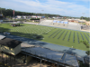 2020-06-05_field.png