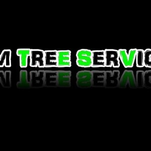 Back Cut - Johnny Misita - JM Tree Service - YouTube