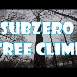 Subzero Tree Climb_Recreational Tree Climbing